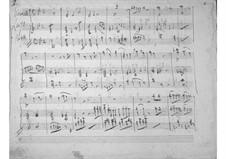 Largo for Cello and Piano: Largo for Cello and Piano by Gaetano Donizetti