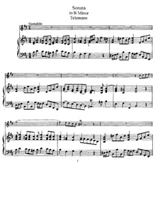 Sonata for Flute and Piano in B Minor: Score and solo part by Georg Philipp Telemann