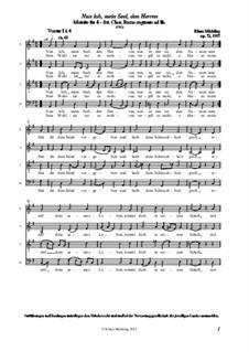 Nun lob, mein Seel, den Herren, Op.72: Nun lob, mein Seel, den Herren by Klaus Miehling
