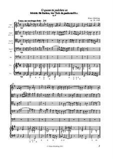 O quam tu pulchra es, Op.28: O quam tu pulchra es by Klaus Miehling