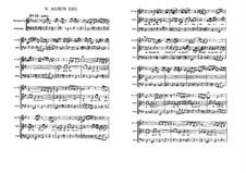 Agnus Dei: Full score by Johann Sebastian Bach