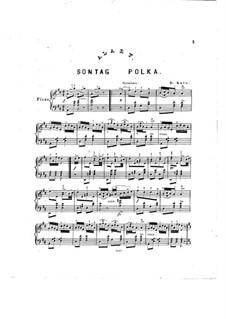 Sontag Polka: Arrangement by D. Krug by Giulio Alary