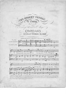 The Stormy Petrel: The Stormy Petrel by Sigismund von Neukomm