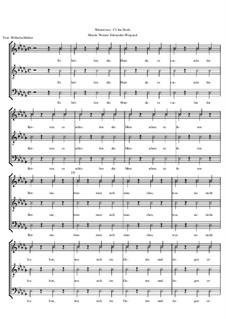 Winterreise, Op.23: Nr.17 Im Dorfe by Werner Schneider-Wiegand