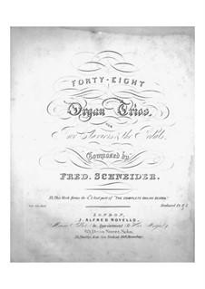 Forty-Eight Trios for Organ: Forty-Eight Trios for Organ by Friedrich Schneider