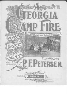 A Georgia Camp Fire: A Georgia Camp Fire by P. F. Petersen