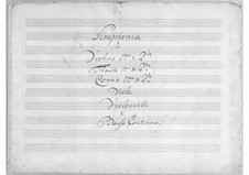 Symphony in D Major: Symphony in D Major by Simoni dall Croubelis
