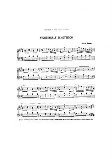 Nightingale Schottische: Nightingale Schottische by Julius Becht