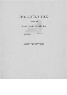 The Little Bird: The Little Bird by Jack Wells