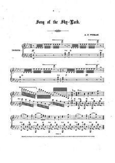 Song of the Skylark: Song of the Skylark by Addison Wyman