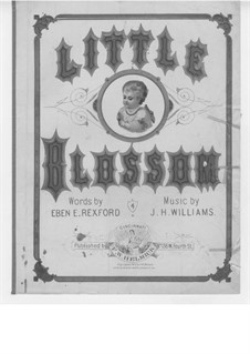 Little Blossom: Little Blossom by J. H. Williams