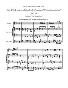 Weihnachts-Oratorium (The Christmas Oratorio), BWV 248: Ach mein herzliebes Jesulein, for trumpet and organ by Johann Sebastian Bach