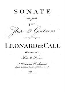 Sonate très facile pour Flûte et Guitarre, Op.103: Sonate très facile pour Flûte et Guitarre by Leonhard von Call