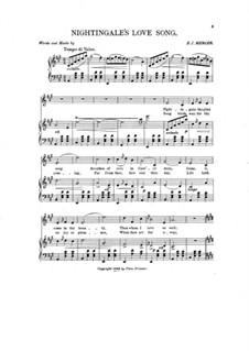 Nightingale's Love Song: Nightingale's Love Song by E. J. Mercer