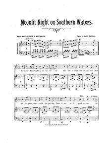 Moonlit Night on Southern Waters: Moonlit Night on Southern Waters by D. H. Magill