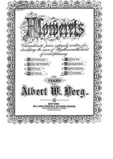 Nocturne in C Major: Nocturne in C Major by Albert W. Berg