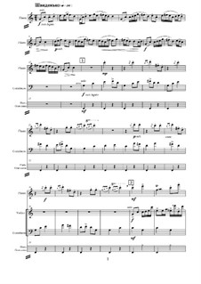 Double variation for ensemble: Double variation for ensemble by Evgenia Marchuk