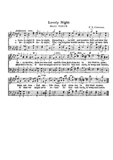 Lovely Night: In A Flat Major by Franz Xaver Chwatal