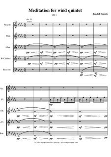 Variations for Wind Quintet: Variations for Wind Quintet by Randolf Smeets