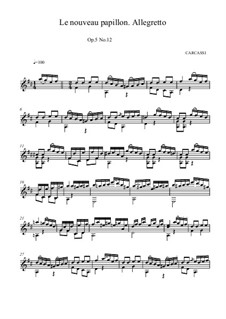 The New Butterfly, Op.5: No.12 in D Major by Matteo Carcassi