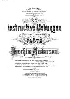 Vierundzwanzig instructive Uebungen in allen Tonarten, Op.30: Vierundzwanzig instructive Uebungen in allen Tonarten by Joachim Andersen