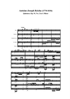 Woodwind Quintet in A Minor, Op.91 No.2: Movement I by Anton Reicha