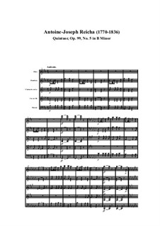 Woodwind Quintet in B Minor, Op.99 No.5: Movement I by Anton Reicha