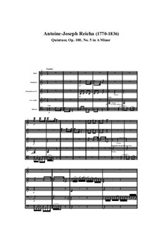 Woodwind Quintet in A Minor, Op.100 No.5: Movement I by Anton Reicha