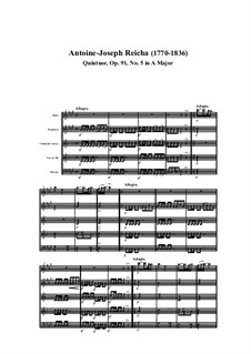 Woodwind Quintet in A Major, Op.91 No.5: Movement I by Anton Reicha