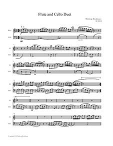 Flute and Cello Duet: Flute and Cello Duet by Winthrop Brookhouse