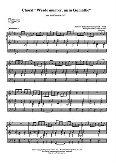 Jesus bleibet: For organ by Johann Sebastian Bach