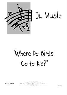 Where Do Birds Go to Die?: In G Major by John Lovell
