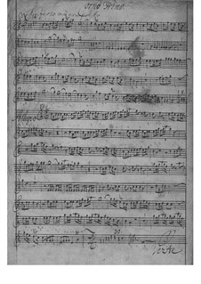 Concerto for Two Horns and Orchester in D Major, TWV 52:D2: Concerto for Two Horns and Orchester in D Major by Georg Philipp Telemann