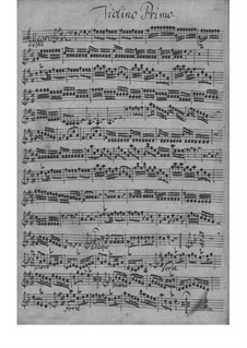 Sinfonia in D Major, SeiH 207 Hwv IV:1: Sinfonia in D Major by Johann David Heinichen