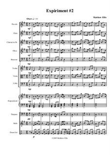 Expiriment No.2: Full score by Matthew Ellis