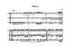 Cadence No.1 (Advanced): Cadence No.1 (Advanced) by Stijn Jodts