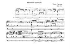 Andantino pastorale for Organ: Andantino pastorale for Organ by Andrea Caporale