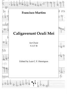 Caligaverunt Oculi Mei: Caligaverunt Oculi Mei by Francisco Martins