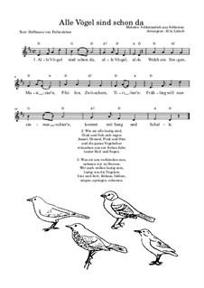 Alle Vögel sind schon da: Für Stimme by folklore