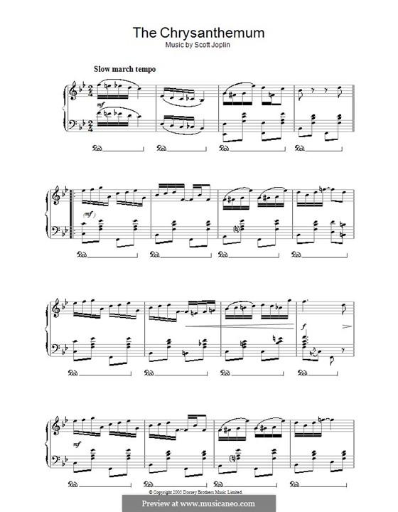 The Chrysanthemum: Für Klavier by Scott Joplin