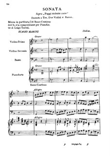 Sonate für zwei Violinen, Cello und Basso Continuo: Sonate für zwei Violinen, Cello und Basso Continuo by Biagio Marini