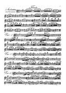 Sieben Variationen für Flöte, Violine und Bratsche, Op.16: Sieben Variationen für Flöte, Violine und Bratsche by Franz Christoph Neubauer