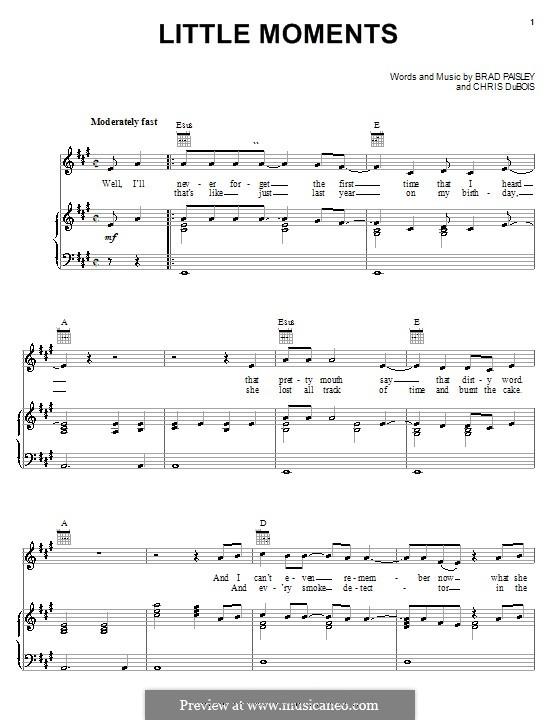 Little Moments: Für Stimme und Klavier (oder Gitarre) by Chris DuBois