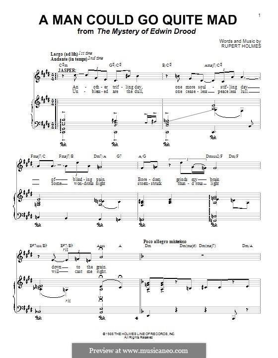 A Man Could Go Quite Mad: Für Stimme und Klavier (oder Gitarre) by Rupert Holmes