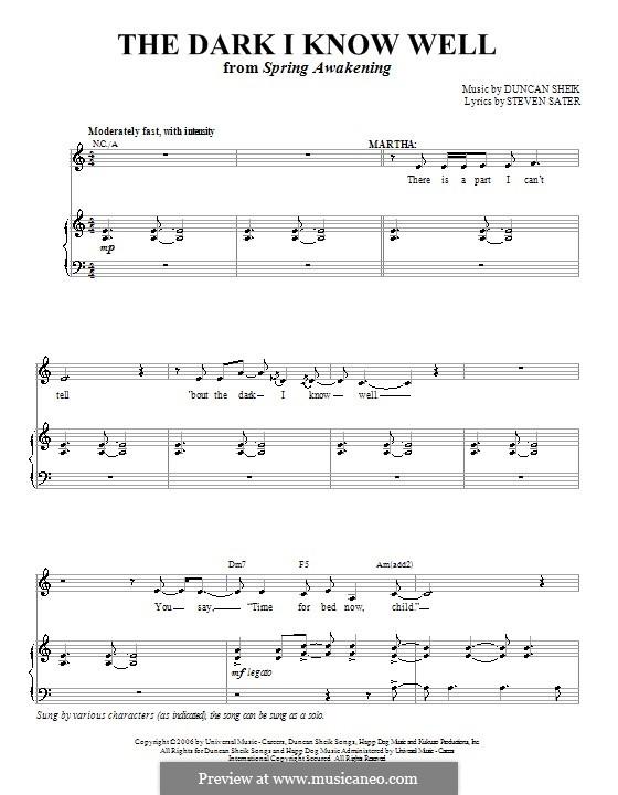The Dark I Know Well: Für Stimme und Klavier (oder Gitarre) by Duncan Sheik