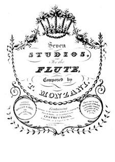 Sieben Studien für Flöte: Sieben Studien für Flöte by Tebaldo Monzani