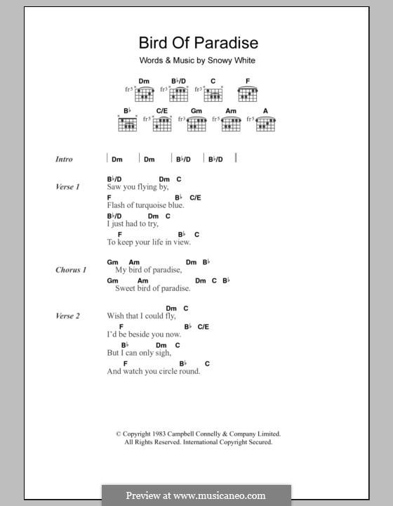 Bird of Paradise: Texte und Akkorde by Snowy White