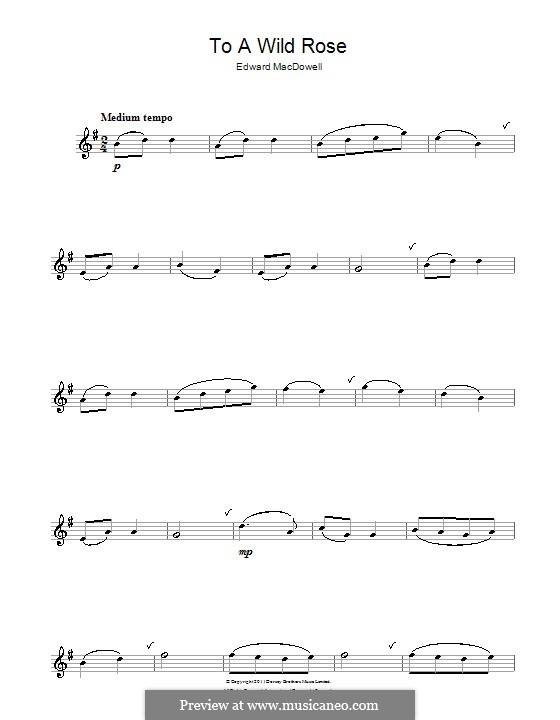 No.1 To a Wild Rose: Für Flöte by Edward MacDowell