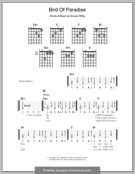 Bird of Paradise: Für Gitarre by Snowy White