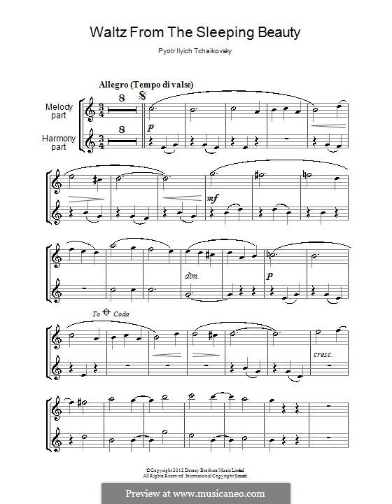 Walzer: Für zwei Klarinetten by Pjotr Tschaikowski